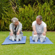 Senior couple doing their streches — Stock Photo #10847191