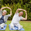 Senior couple doing their streches in the garden - Foto Stock