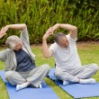 Senior couple doing their streches in the garden — Stock Photo