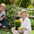 Mature couple working in the garden — Stock Photo