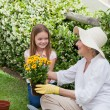Grandmother with her granddaughter working in the garden — Stock Photo