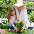 Stock Photo: Grandmother with her granddaughter working in garden