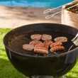 A barbecue in the garden — Stock Photo