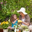 Happy Grandmother with her granddaughter working in the garden - Stock fotografie
