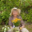 Retired woman working in the garden — Stock fotografie