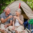 Stock Photo: Seniors camping in garden
