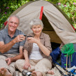 Seniors camping in the garden - Stock Photo