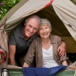 Stock Photo: Happy couple camping in garden