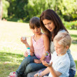 Family blowing bubbles in the park - Foto Stock