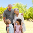 Grandparents with their grandchildren in the park — Stock Photo #10849361