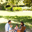 Smiling family picnicking in the park — Stock Photo