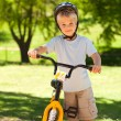 Stock Photo: Boy with his bike