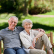 Senior couple sitting on a bench — Stock Photo #10849615