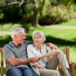 Senior couple sitting on bench — Foto de stock #10849694