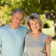 Portrait of a lovely senior couple — Stock Photo #10849711