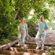Stock Photo: Couple running in the wood