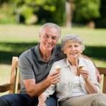 Senior couple eating an ice cream on a bench — Stock Photo #10849915