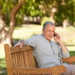 Stock Photo: Retired mphoning in park