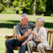 Senior couple eating an ice cream on a bench — Stock Photo