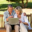 Stock Photo: Senior couple working on their laptop