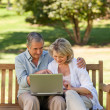 Senior couple working on their laptop — Stock Photo #10849994