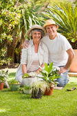 Senior couple looking at the camera in the garden — Stock Photo
