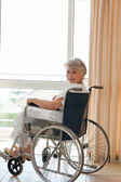在她轮椅上看着相机的女人 — 图库照片