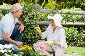 Casal maduro, trabalhando no jardim — Fotografia Stock