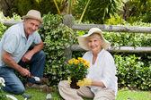 äldre par arbetar i trädgården — Stockfoto