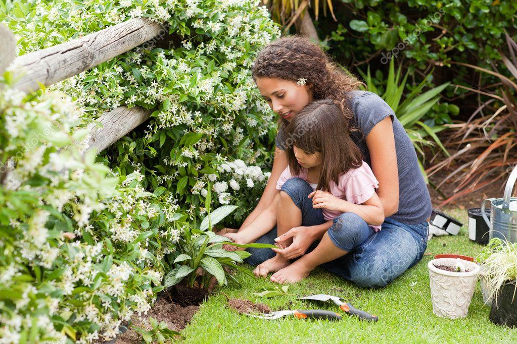 Цитаты о саде и огороде