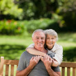 Mature couple hugging in the garden — Stock Photo