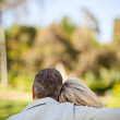 Elderly couple sitting on the bench with their back to the camer — Stock Photo #10850063