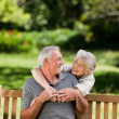 Mature couple hugging in the garden - Foto Stock