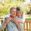 Stock Photo: Senior womhugging her husband who is on bench