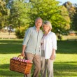 Stock Photo: Retired couple looking for place to picnicking
