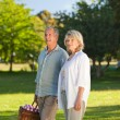 Retired couple looking for a place to picnicking — Stock Photo