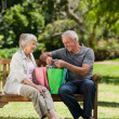Retired couple with shopping bags — Stock Photo