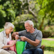 Retired couple with shopping bags — Stock Photo #10850542