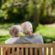 Couple sitting on the bench with their back to the camera — Stock Photo #10850560