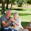 Stock Photo: Retired couple picnicking in garden
