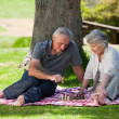 Mature couple  picnicking in the garden — Stock Photo
