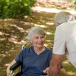 Stock Photo: Senior couple in the woods