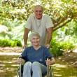 Senior couple in the woods — Stock Photo