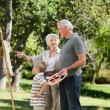 Family painting in the garden — Stock Photo