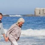 Elderly couple walking on the beach — Stock Photo #10852823