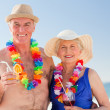 Senior couple drinking a cocktail on the beach — Stock Photo #10853111