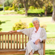 Senior woman on a bench - Stock Photo