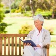 Stock Photo: Retired woman reading a book