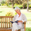 Retired woman reading a book - Stock Photo