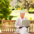 Stock Photo: Retired womworking on her laptop